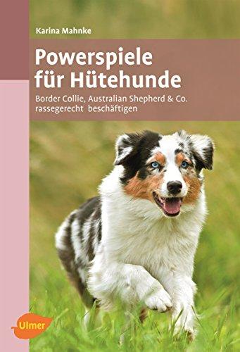 Powerspiele für Hütehunde: Border Collie, Australian Shepherd & Co. rassegerecht beschäftigen