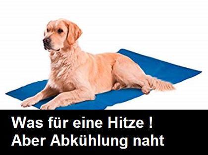 Abkühlung Hundematte Sommerhitze