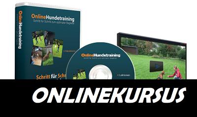 online kursus hundetraining