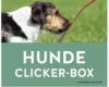 Hunde Clicker Box